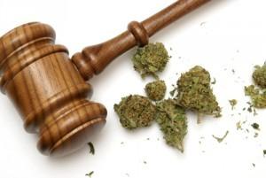 marijuana use in south carolina child custody cases